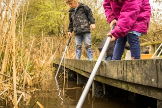 Pond dipping event at Wolseley