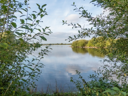 Croxall Lakes Nature Reserve - Lakeside view