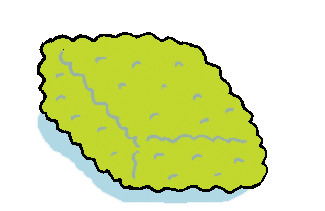 Sponge illustration