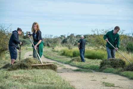 Volunteering - adults