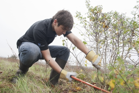 Gentleshaw Common Volunteering