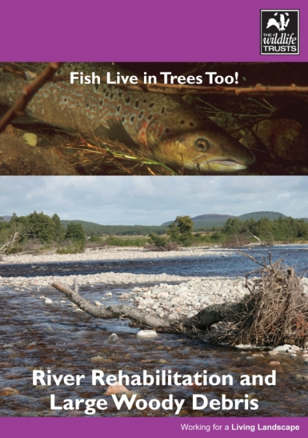 Fish live in trees too
