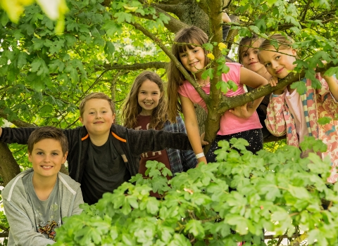 The Wolseley Centre - kids